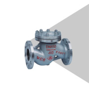KORVAL Ranch Lift check valve