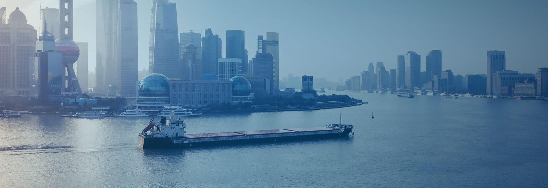 China-made ship for sale / China Domestic Ship