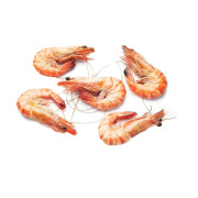 Cooked Prawn (10 Boxes)