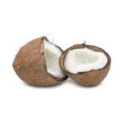 椰子 China