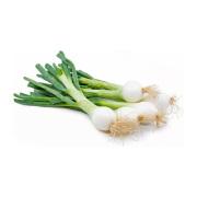 Spring Onion MALAYSIA Rich in vitamin C, vitamin B2 and vitamin A