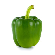 Green Bell Pepper MALAYSIA Rich in many vitamin and antioxidants
