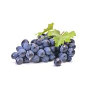 Black Grape Rich in antioxidants